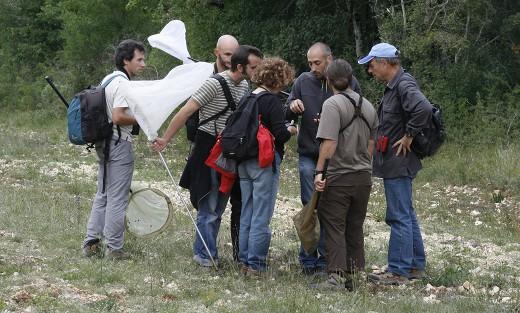 Formation Papillons du 8 mai 2010