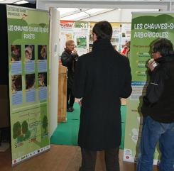 Exposition Chauves-souris arboricoles