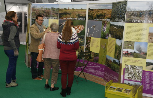 Exposition landes