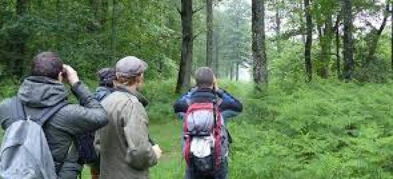 Organisation des deuxièmes rencontres naturalistes régionales