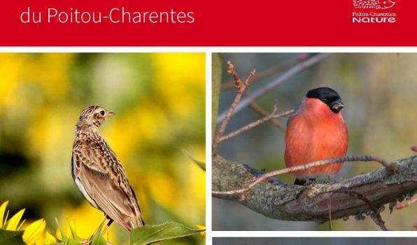 Liste rouge des Oiseaux du Poitou-Charentes
