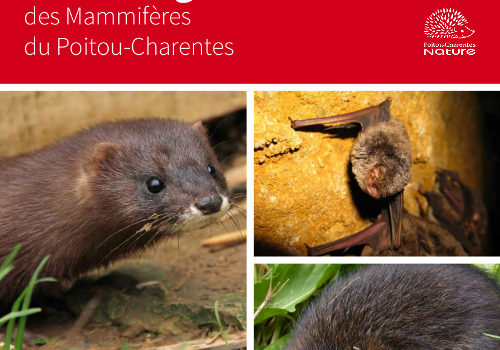 Liste rouge des Mammifères du Poitou-Charentes