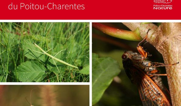 Liste rouge des Cigales, Ascalaphes, Mantes et Phasme du Poitou-Charentes