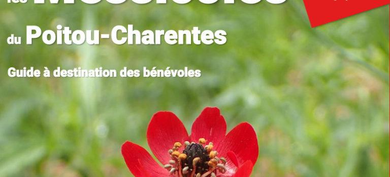 Les messicoles du Poitou-Charentes – Guide à destination du bénévole