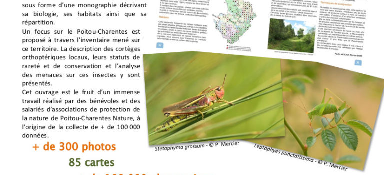Souscription de l'Atlas des Orthoptères du Poitou-Charentes